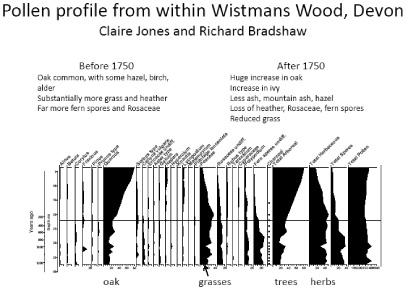 Pollen profile from Wistman's Wood